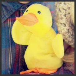 duck actually